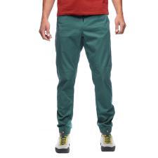 Notion Pants